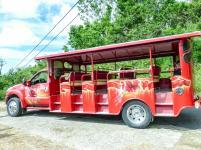 Safari-Bus-1200x900