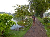 Thailand Bangkok Lumphini Park