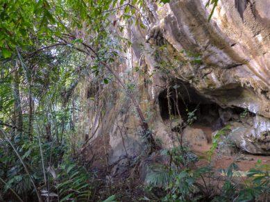 Thailand Khao Sok Nationalpark Dschungel Anurak Community Lodge Dschungelpfad Wildnis Felsen Höhle