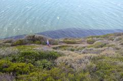 Südafrika South Africa Kap Halbinsel False Bay Cape Point Nationalpark Wanderweg