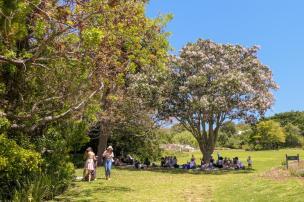 Südafrika South Africa Kapstadt Cape Town Kirstenbosch Botanical Garden Botanischer Garten Picknick Wiese