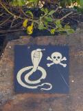 Südafrika South Africa Kap Halbinsel False Bay Cape Point Nationalpark Schlange Warnung