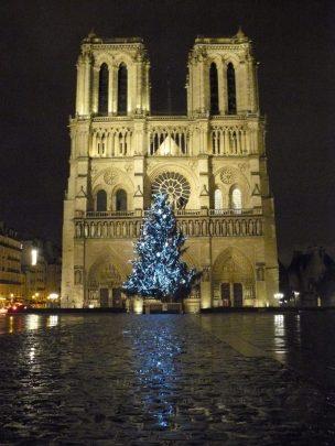 Frankreich Paris Notre Dame de Paris Kathedrale Gotik Fassade Glockenturm Vorplatz Parvis Weihnachten Weihnachtsbaum