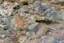 Südafrika South Africa Kap Mossel Bay St Blaize Cave Höhle Trail ärchäologische Fundstätte Gestein