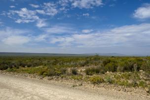 Südafrika South Africa Kap De Hoop Nature Reserve Naturreservat Landschaft Fynbos Weite