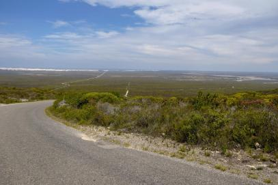 Südafrika South Africa Kap De Hoop Nature Reserve Naturreservat Fynbos Landschaft