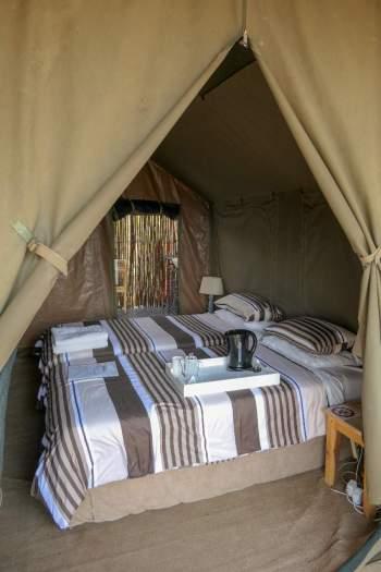 Südafrika South Africa Kleine Karoo Oudtshoorn Schoemanshoek Le Petit Karoo Ranch Safarizelt Betten Glamping