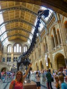 Großbritannien England UK London Natural History Museum Halle Foyer Dinosaurier Skelett
