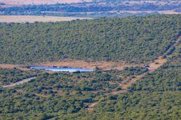 Südafrika South Africa Garden Route Ostkap Addo Elephant Nationalpark Safari Wasserloch Hapoor Dam
