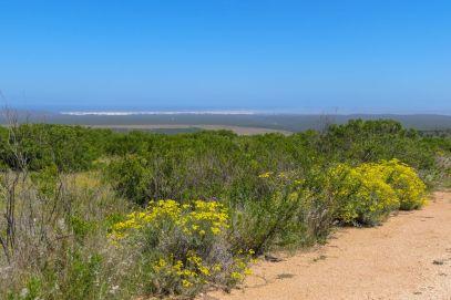 Südafrika South Africa Garden Route Ostkap Addo Elephant Nationalpark Safari Landschaft