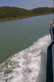 Südafrika South Africa Garden Route Ostkap Sibuya Game Reserve Fluss Kariega Vogelsafari Boot