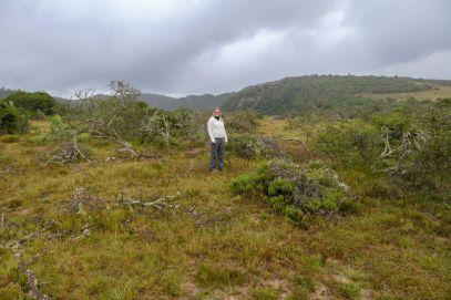 Südafrika South Africa Garden Route Ostkap Sibuya Game Reserve Wildreservat Game Drive Safari Busch