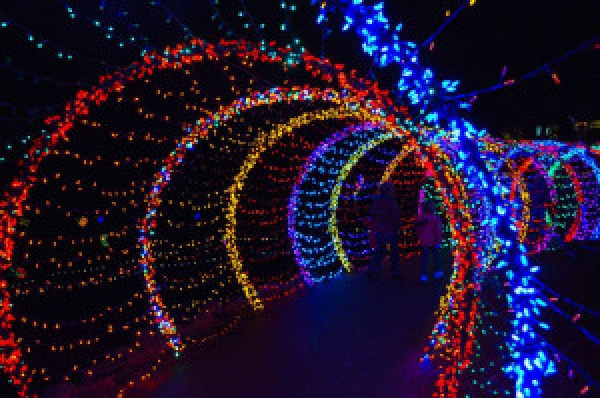 Christmas decorative LED fairy lighted tunnel