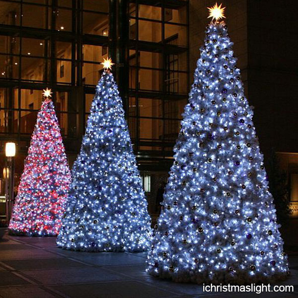 Big commercial wholesale christmas trees