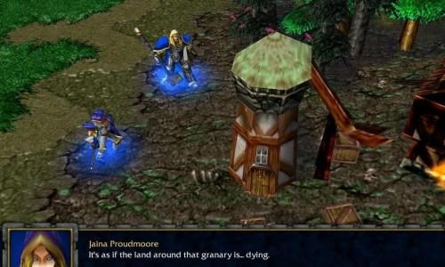 WarCraft 3: Reign of Chaos - Screenshot