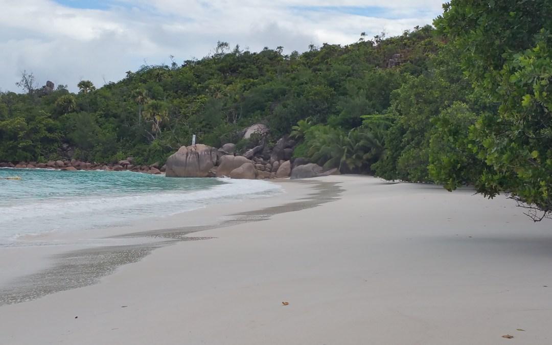 Praslin, du bist einzigartig! – Seychellen Teil 3