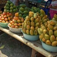 Congo : Quand l'armée vend des mangues…!