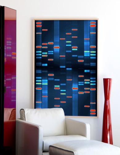 Galeria_DNA1