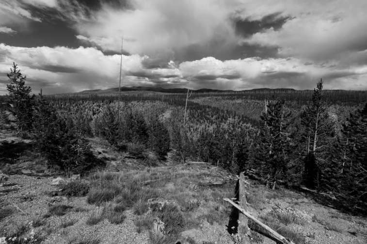 Yellowstone - 2013-08-11, 16h13 - 4540_DxO_HD1920_1