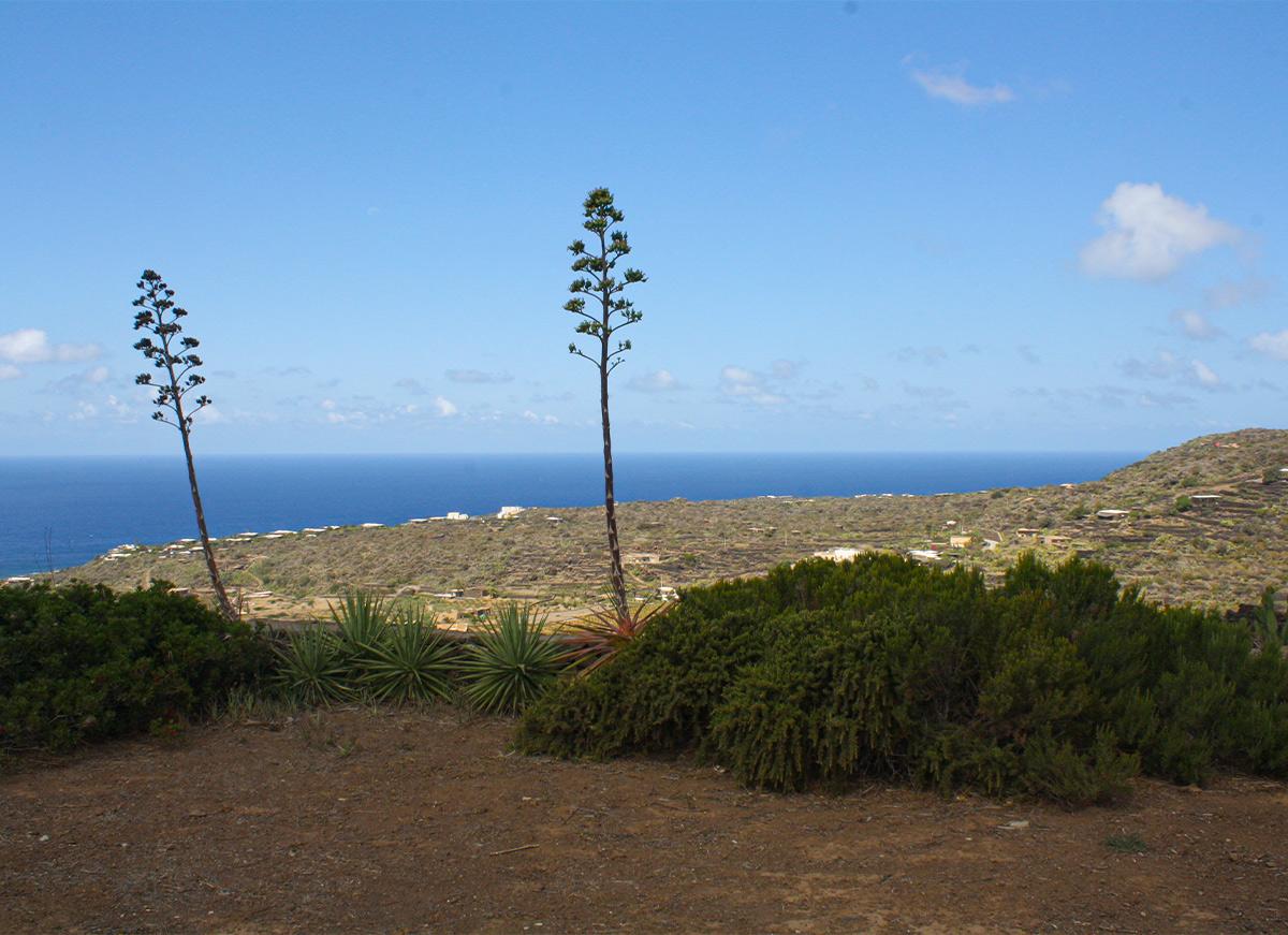 Isola Di Pantelleria 03