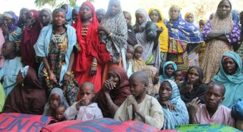 11 Pregnant Displaced Women Deliver Babies In Borno Camps