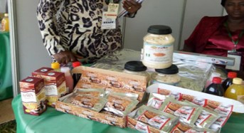 Nigerian researches Achieve Feat, Produce Health Improving Foods