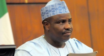 Tambuwal Urges Political Engagement Over Niger Delta Crisis