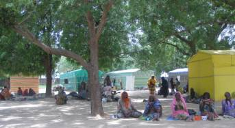 Govt Shifts Focus To Rehabilitation Of Displaced Persons