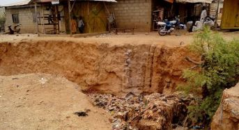 Ecological Funds: A Tale OF Corruption And Waste