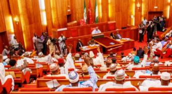 "2017 Budget: Senate Approves ""Empty"" MTEF/FSP"
