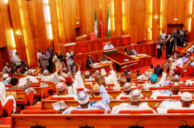 buharis-nominee-insists-senate-must-go