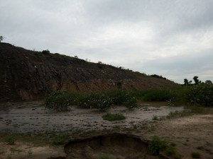 The environment around the coal mine does not look too good