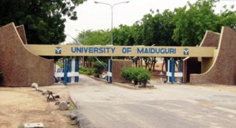 Security Men Foil Another Suicide Attack On University Of Maiduguri