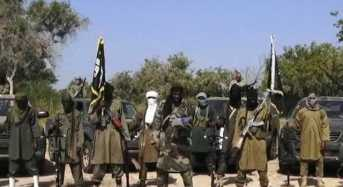 Wanted Boko Haram Fighter Surrenders