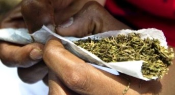 Kano, Katsina Top List Of Drug Offenders In Nigeria