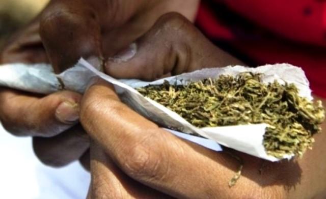 Kano, Katsina Top List Of Drug Offenders In Nigeria1