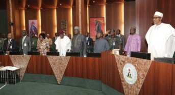 Federal Executive Council Meeting Fails To Hold