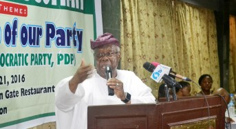 Bode George: I'm not a chameleon… I can never go to APC