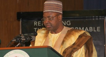 EXCLUSIVE: Whistle-blower misled ICPC, DSS, SARS about 'illegal activity' at Namadi Sambo's house