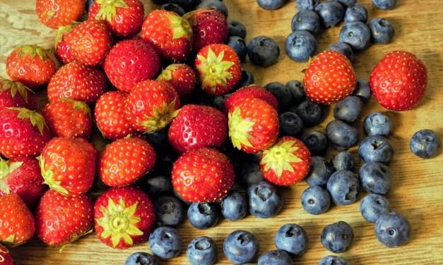 Un avant-goût d'été : Cueillettes de baies, fruits et légumes