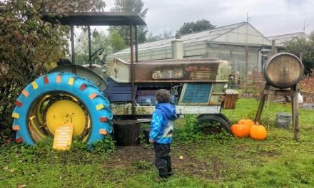Celebrate Fall at the farm!