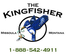 The Kingfisher - iClickFishing.com