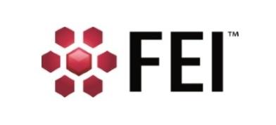 FEI Company of USA (S.E.A) Pte Ltd