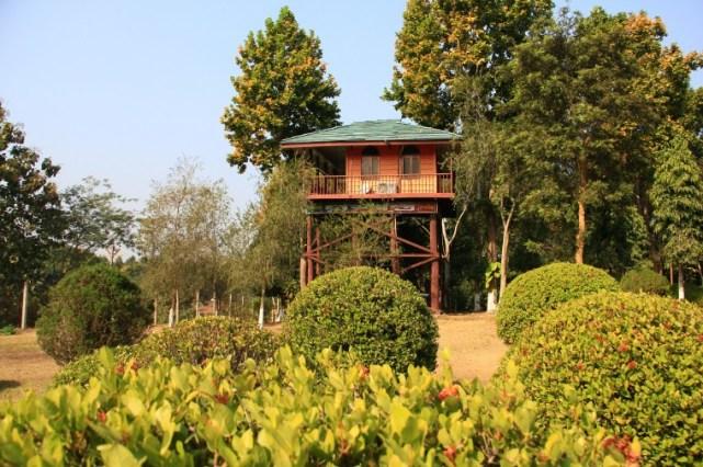 tree-house-tepania-eco-park