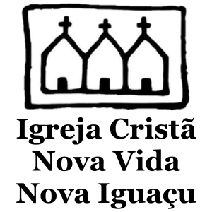 Logo ICNVNI-600