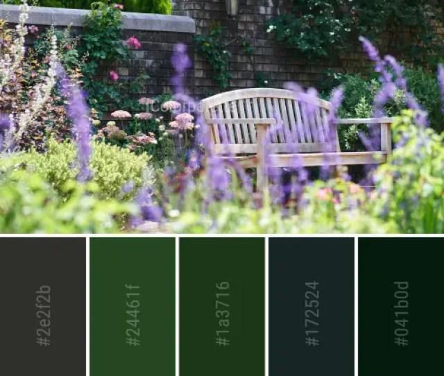 You Can Download Color Palette As Svg Pdf Palette Image Collage Image Wallpaper