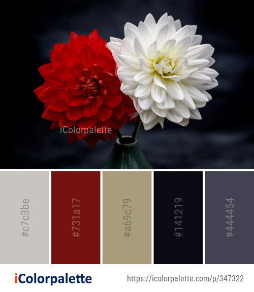 1163 Red Color Palette Ideas In 2021 Icolorpalette