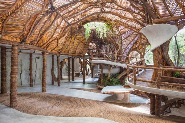Insight Ik Lab Treehouse In Mexico