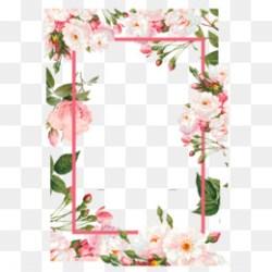 Flower Vector PNG Flower Vector Art Black Flower Vector Red Flower Vector CleanPNG / KissPNG