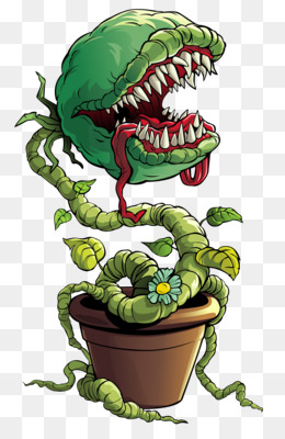 Tumbuhan Venus : tumbuhan, venus, Venus, Flytrap, Transparent, Clipart, Download., CleanPNG, KissPNG